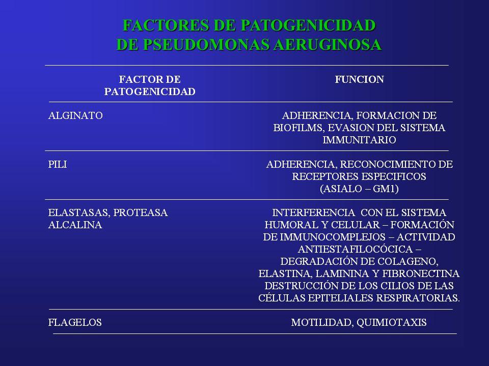 FACTORES DE PATOGENICIDAD DE PSEUDOMONAS AERUGINOSA