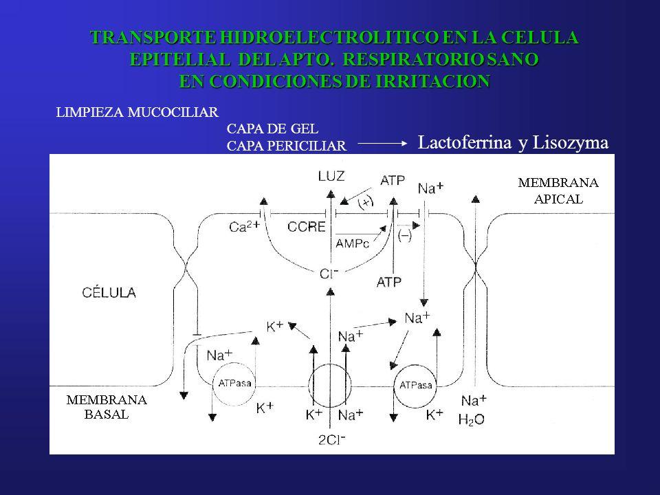 Lactoferrina y Lisozyma