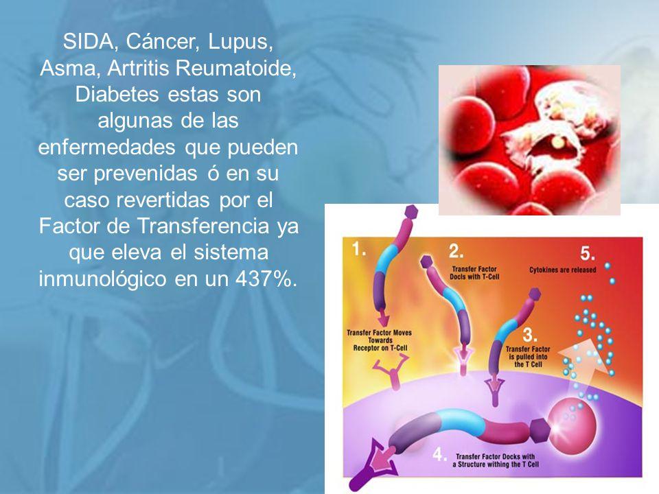 SIDA, Cáncer, Lupus, Asma, Artritis Reumatoide, Diabetes estas son algunas de las enfermedades que pueden ser prevenidas ó en su caso revertidas por el Factor de Transferencia ya que eleva el sistema inmunológico en un 437%.