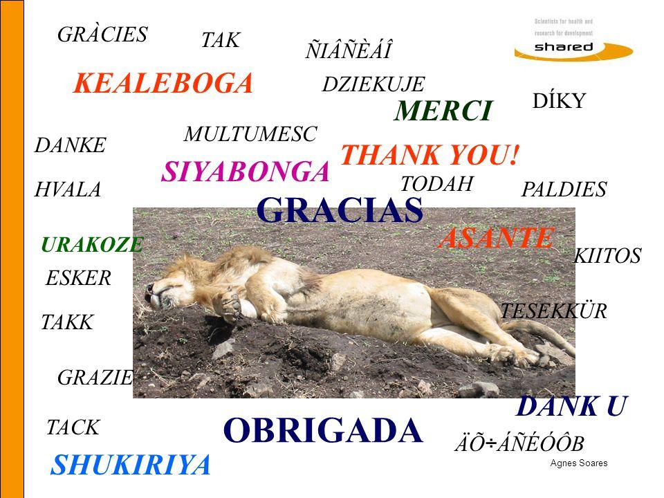 GRACIAS OBRIGADA KEALEBOGA MERCI THANK YOU! SIYABONGA ASANTE DANK U