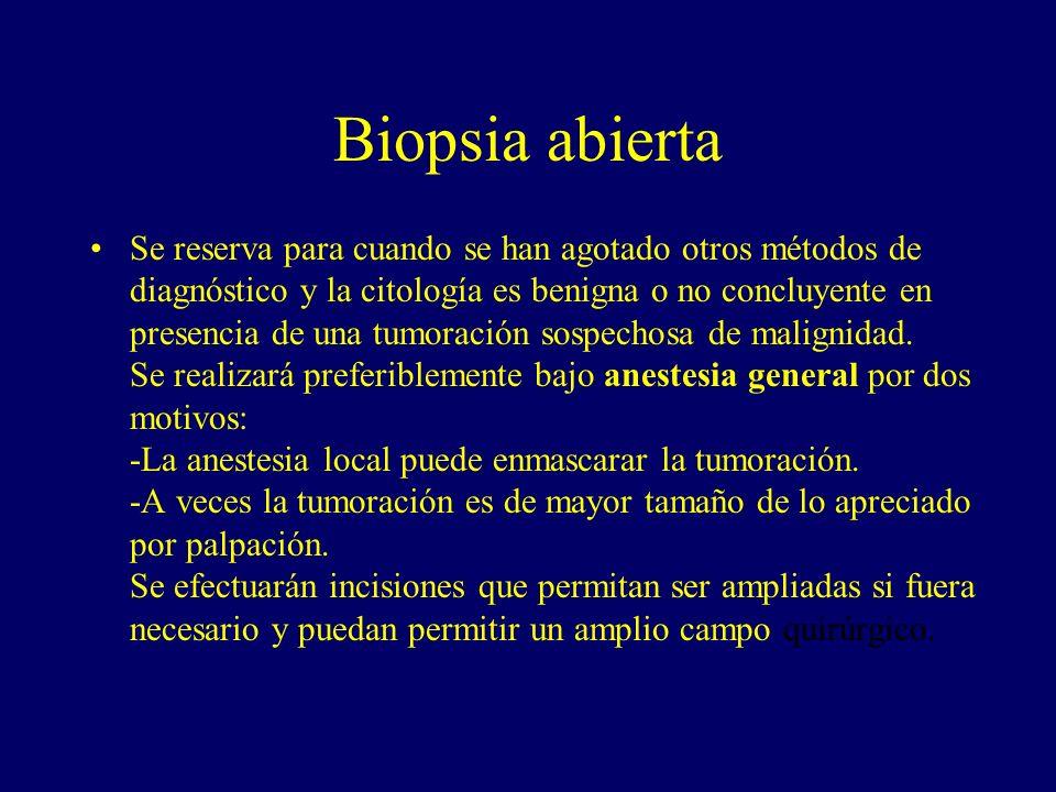 Biopsia abierta