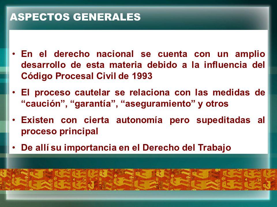 ASPECTOS GENERALES En el derecho nacional se cuenta con un amplio desarrollo de esta materia debido a la influencia del Código Procesal Civil de 1993.