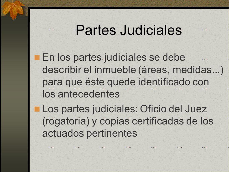 Partes Judiciales En los partes judiciales se debe describir el inmueble (áreas, medidas...) para que éste quede identificado con los antecedentes.