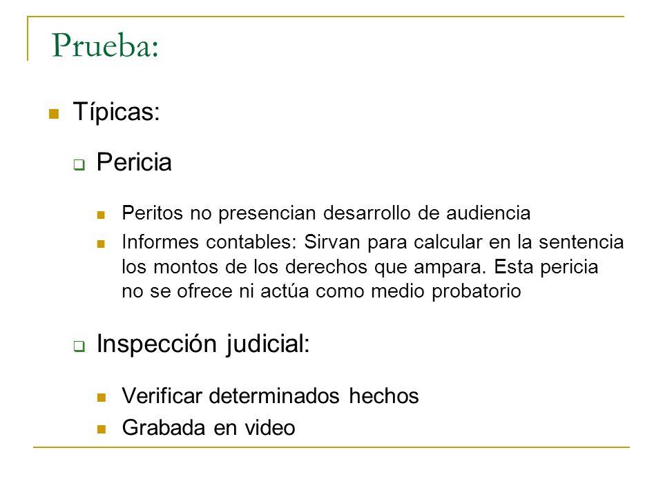 Prueba: Típicas: Pericia Inspección judicial: