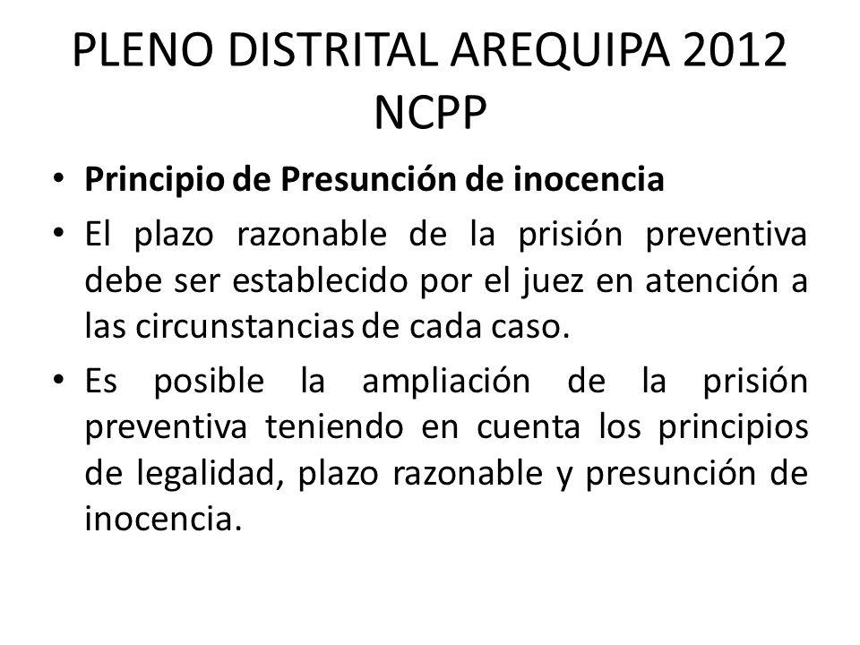 PLENO DISTRITAL AREQUIPA 2012 NCPP