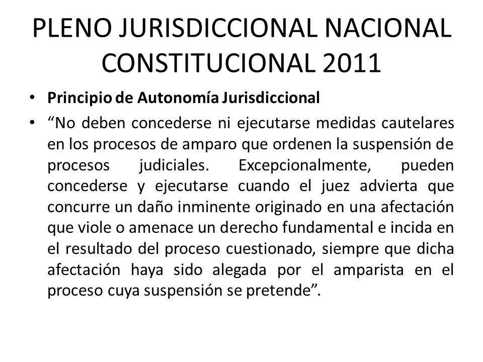 PLENO JURISDICCIONAL NACIONAL CONSTITUCIONAL 2011