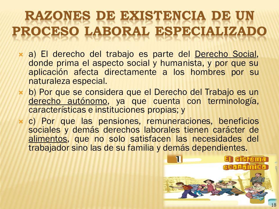 RAZONES DE EXISTENCIA DE UN PROCESO LABORAL ESPECIALIZADO