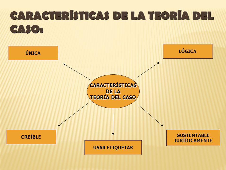 CARACTERÍSTICAS DE LA TEORÍA DEL CASO:
