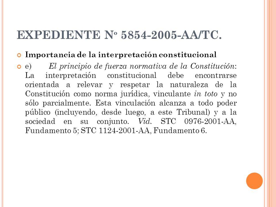 EXPEDIENTE Nº 5854-2005-AA/TC. Importancia de la interpretación constitucional.