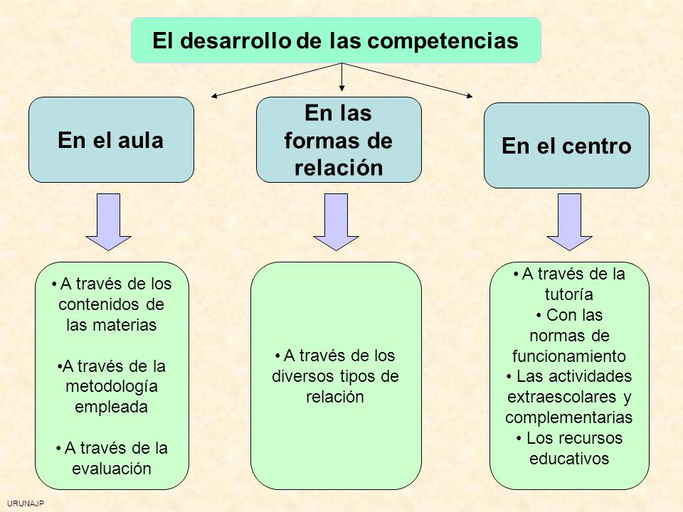 El desarrollo de las competencias En las formas de relación