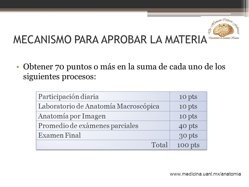 Increíble La Escuela De Medicina De Anatomía Macroscópica Galería ...