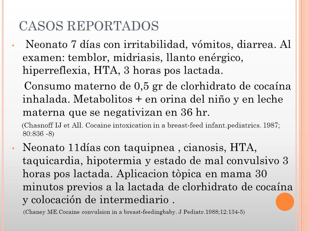 CASOS REPORTADOS