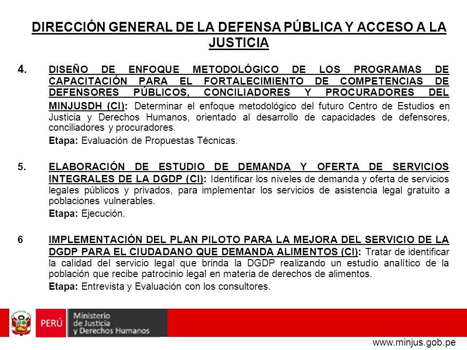 DIRECCIÓN GENERAL DE LA DEFENSA PÚBLICA Y ACCESO A LA JUSTICIA