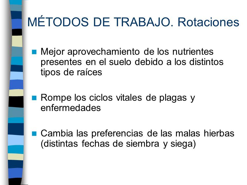 MÉTODOS DE TRABAJO. Rotaciones
