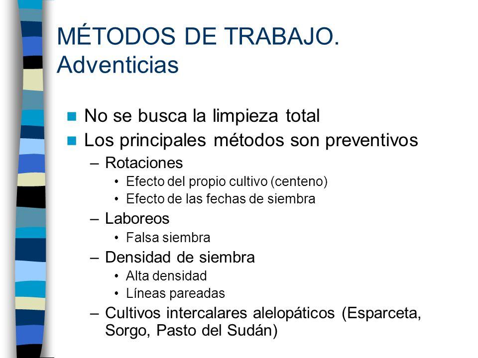 MÉTODOS DE TRABAJO. Adventicias