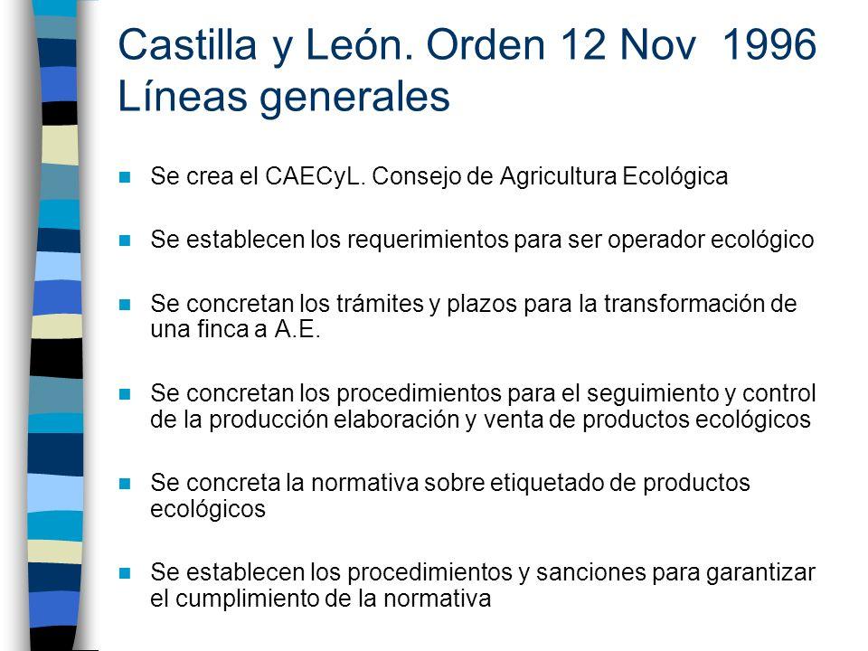 Castilla y León. Orden 12 Nov 1996 Líneas generales