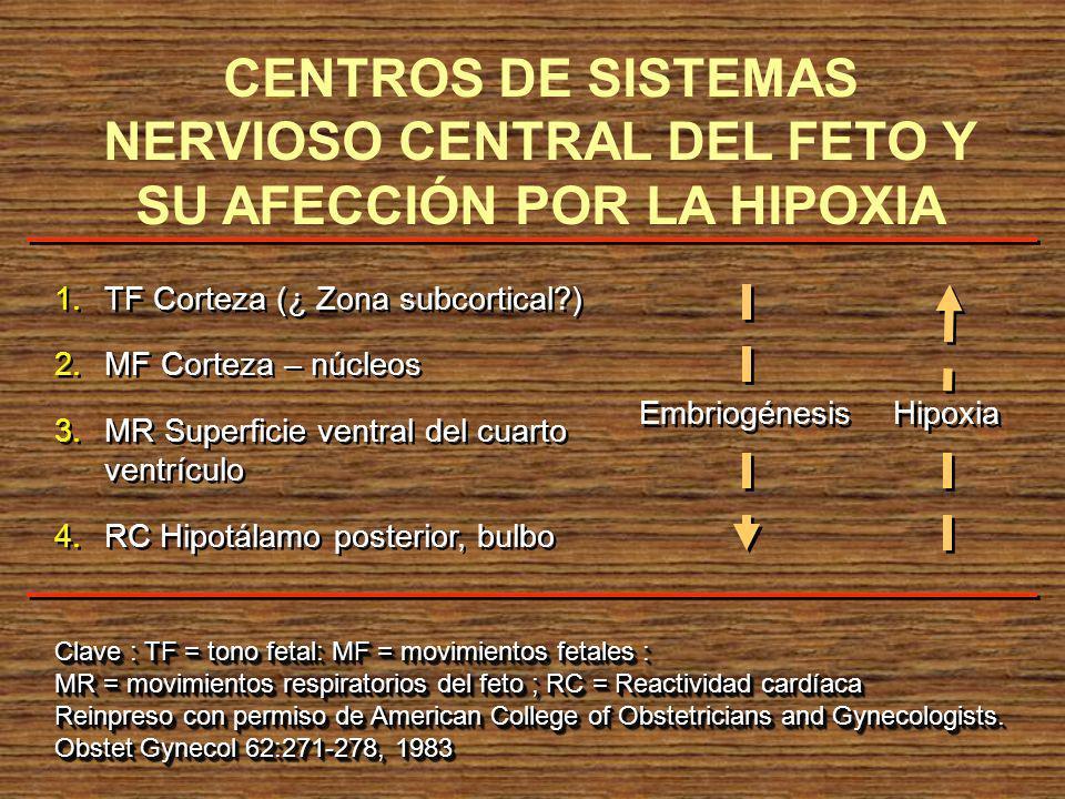 CENTROS DE SISTEMAS NERVIOSO CENTRAL DEL FETO Y SU AFECCIÓN POR LA HIPOXIA