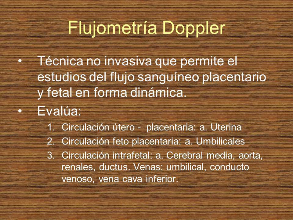 Flujometría Doppler Técnica no invasiva que permite el estudios del flujo sanguíneo placentario y fetal en forma dinámica.
