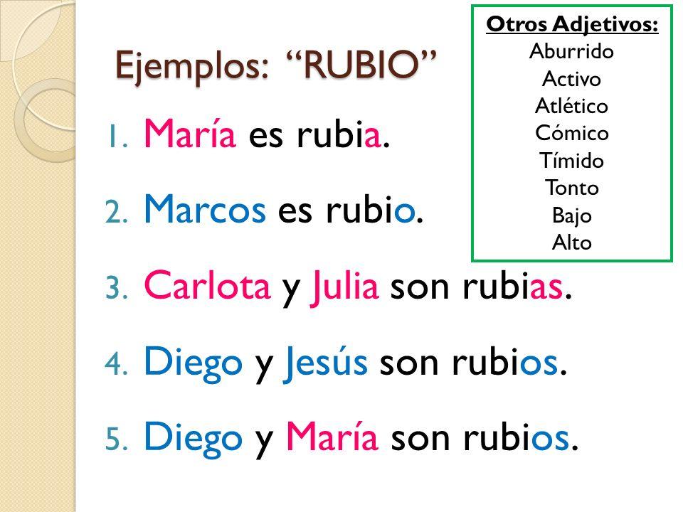Carlota y Julia son rubias. Diego y Jesús son rubios.