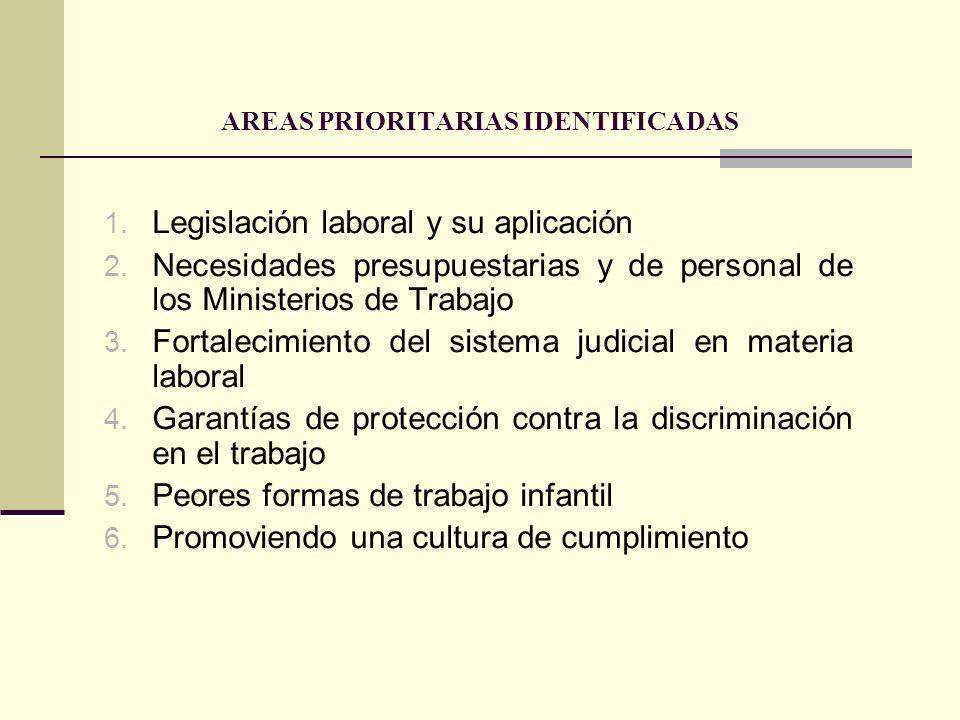 AREAS PRIORITARIAS IDENTIFICADAS