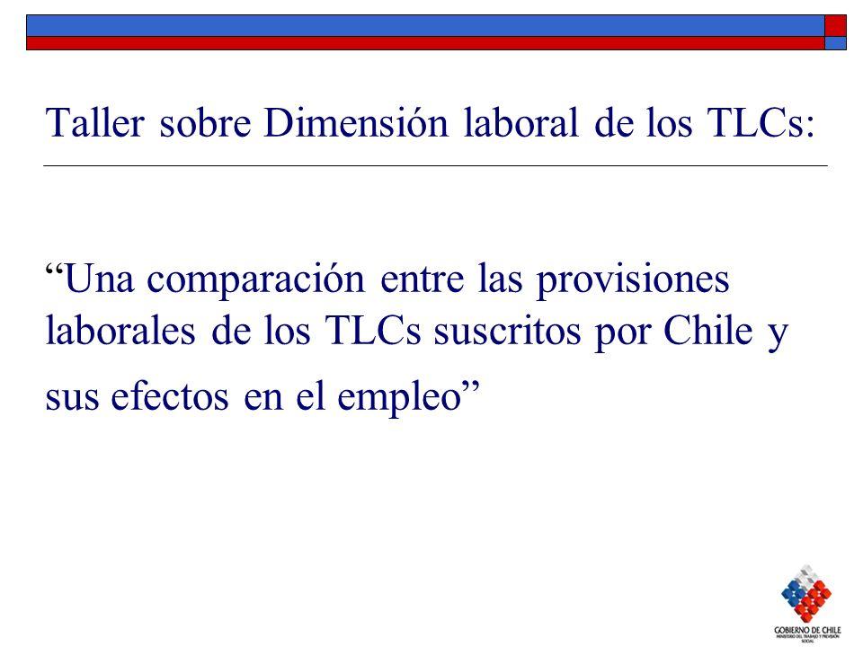 Taller sobre Dimensión laboral de los TLCs: Una comparación entre las provisiones laborales de los TLCs suscritos por Chile y sus efectos en el empleo