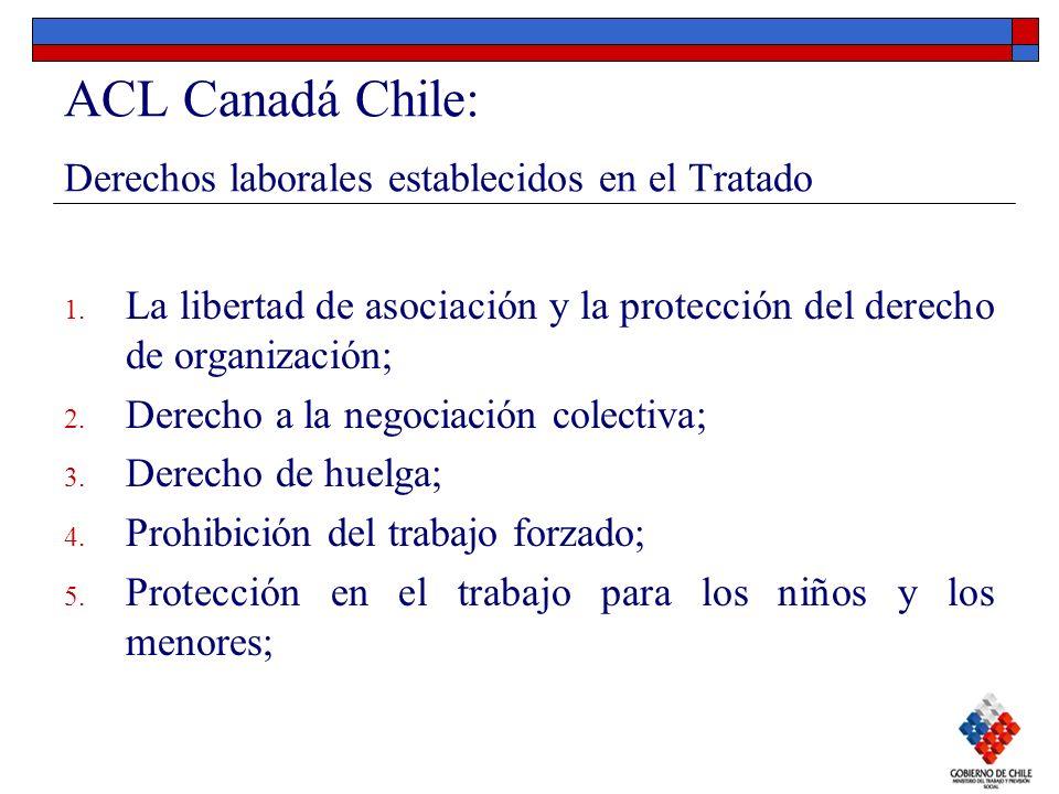 ACL Canadá Chile: Derechos laborales establecidos en el Tratado