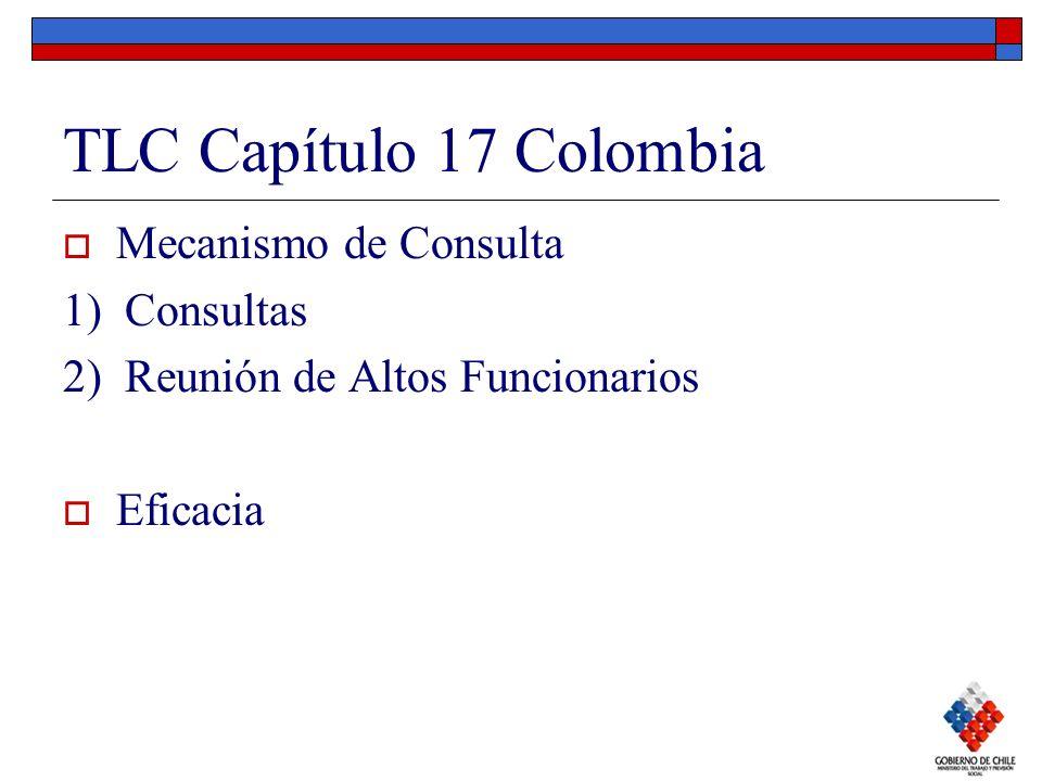 TLC Capítulo 17 Colombia Mecanismo de Consulta 1) Consultas