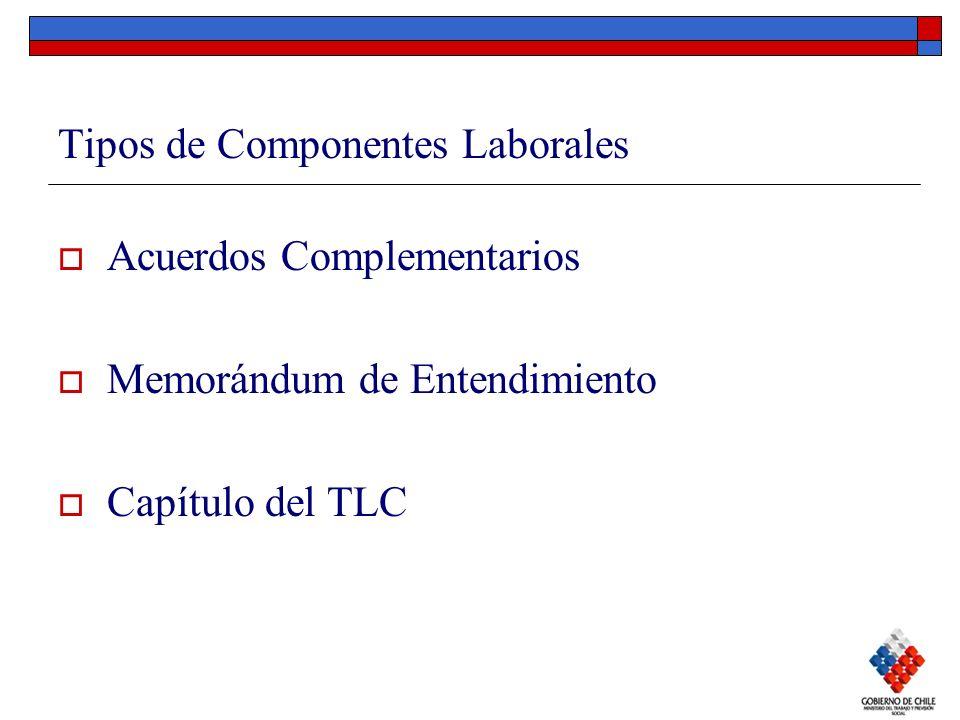 Tipos de Componentes Laborales