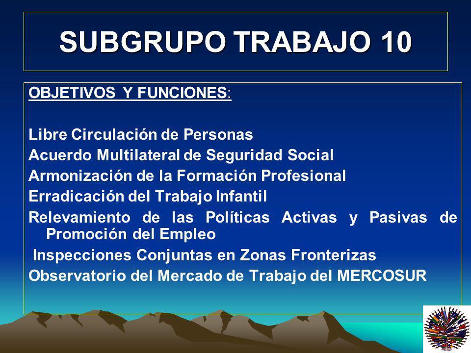 SUBGRUPO TRABAJO 10 OBJETIVOS Y FUNCIONES: