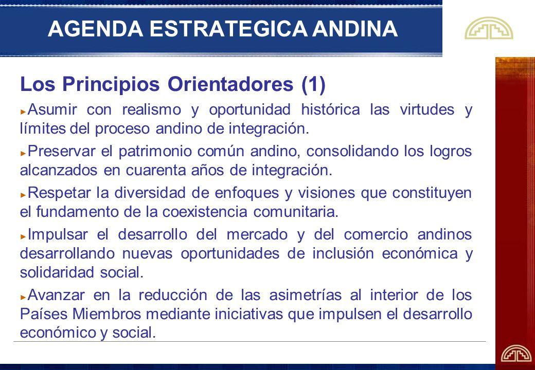 AGENDA ESTRATEGICA ANDINA