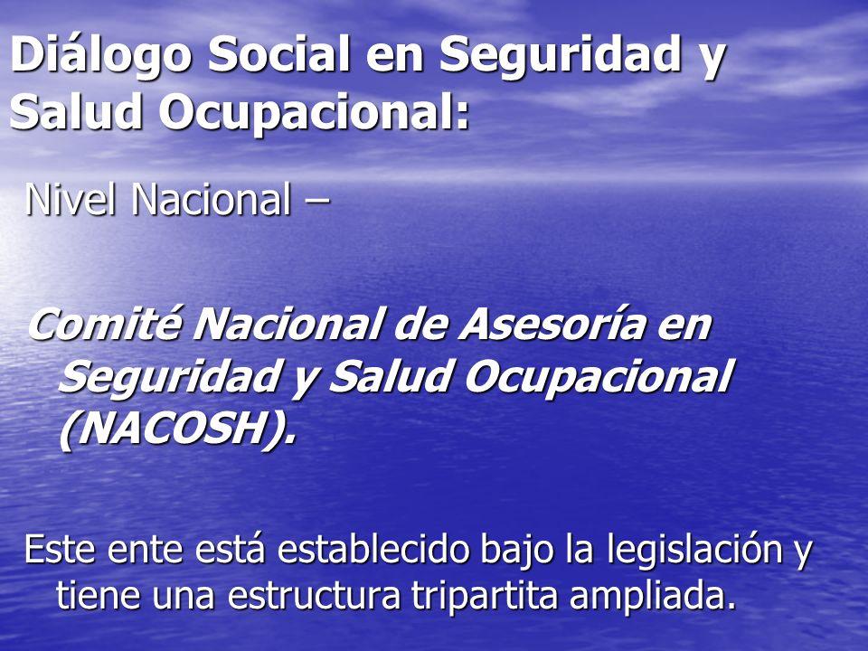Diálogo Social en Seguridad y Salud Ocupacional: