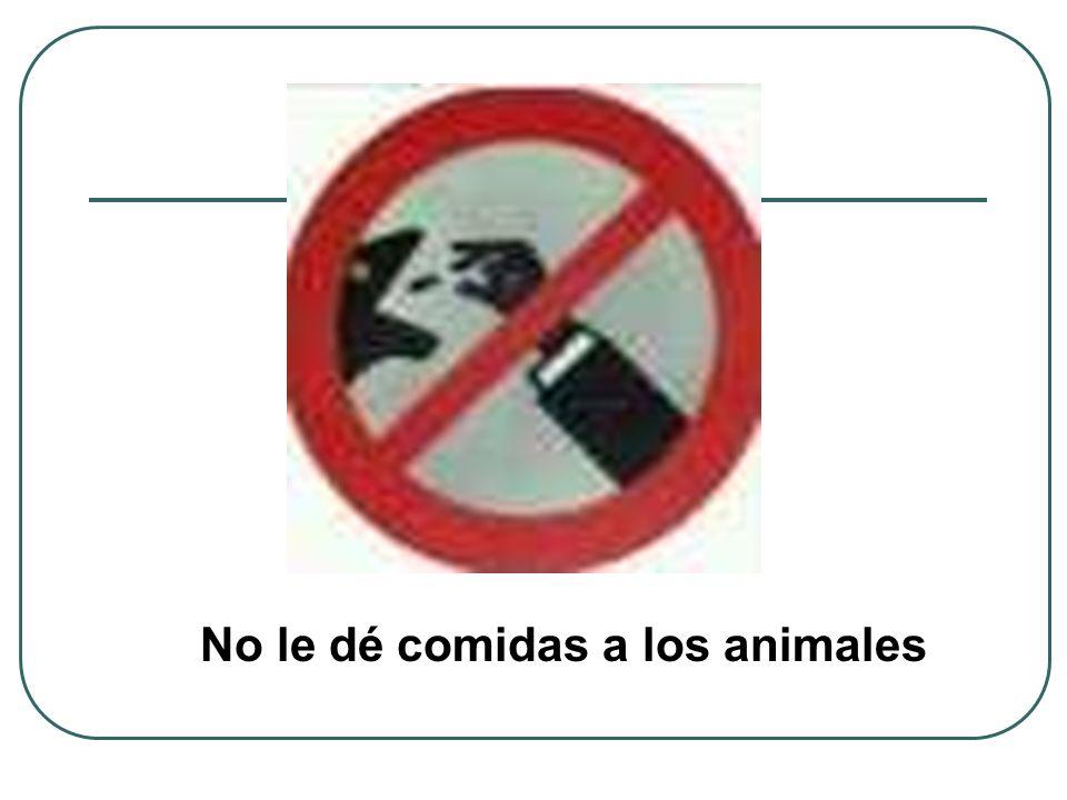 No le dé comidas a los animales