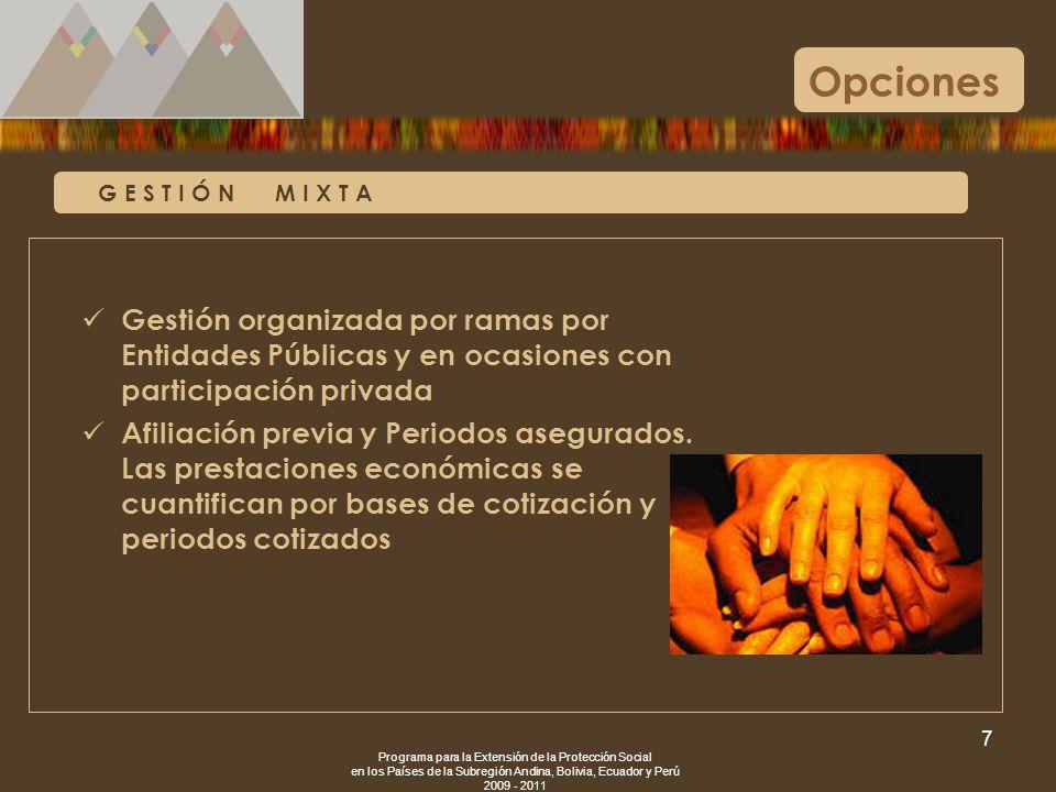 Opciones G E S T I Ó N M I X T A. Gestión organizada por ramas por Entidades Públicas y en ocasiones con participación privada.