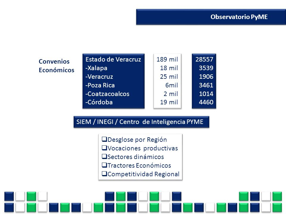 Observatorio PyME Estado de Veracruz. -Xalapa. -Veracruz. -Poza Rica. -Coatzacoalcos. -Córdoba.