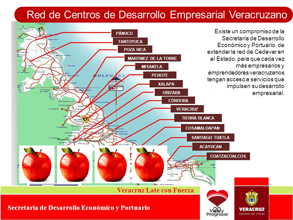 Red de Centros de Desarrollo Empresarial Veracruzano