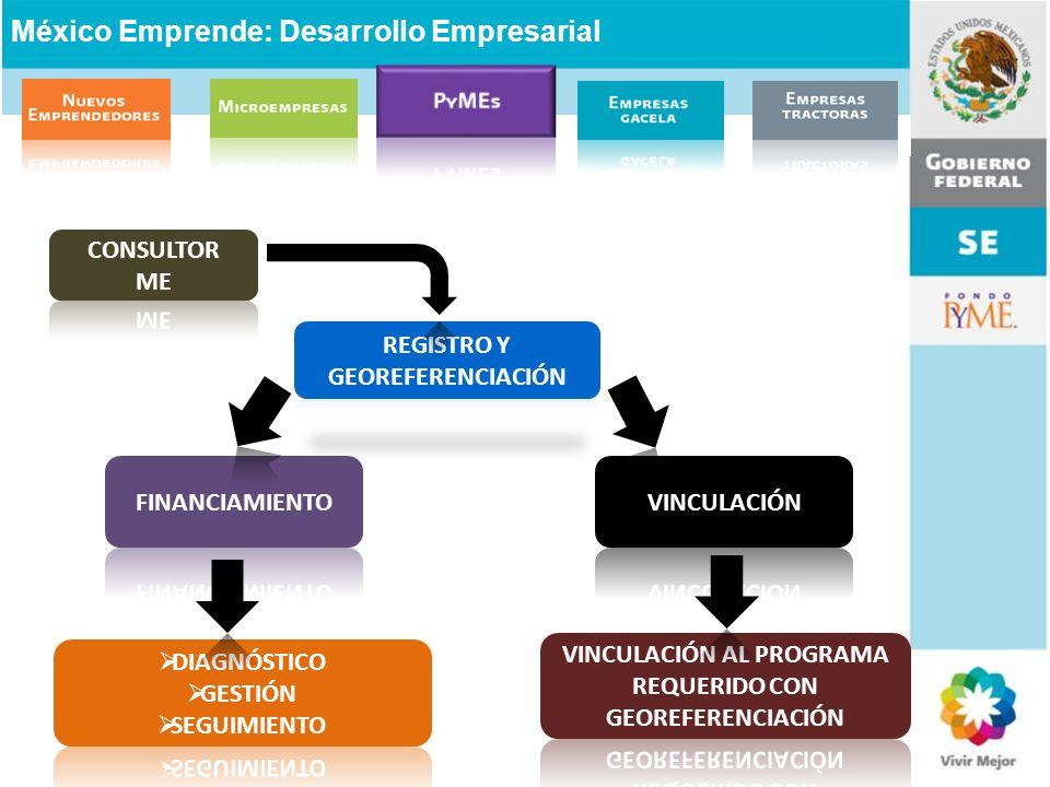 VINCULACIÓN AL PROGRAMA REQUERIDO CON GEOREFERENCIACIÓN