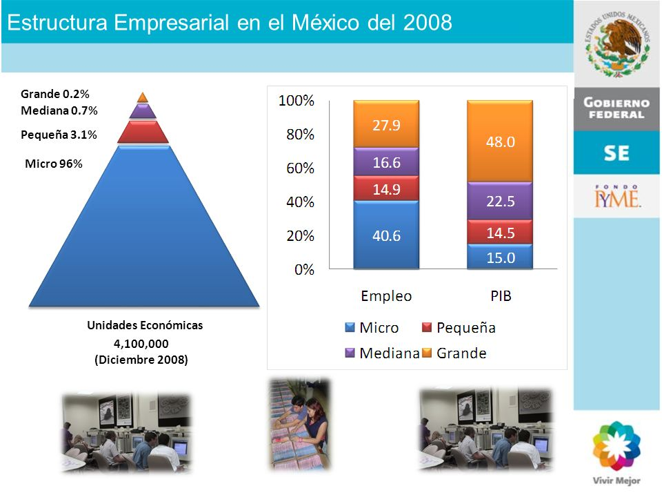 Estructura Empresarial en el México del 2008