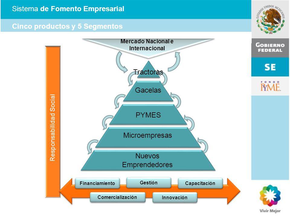 Sistema de Fomento Empresarial Cinco productos y 5 Segmentos