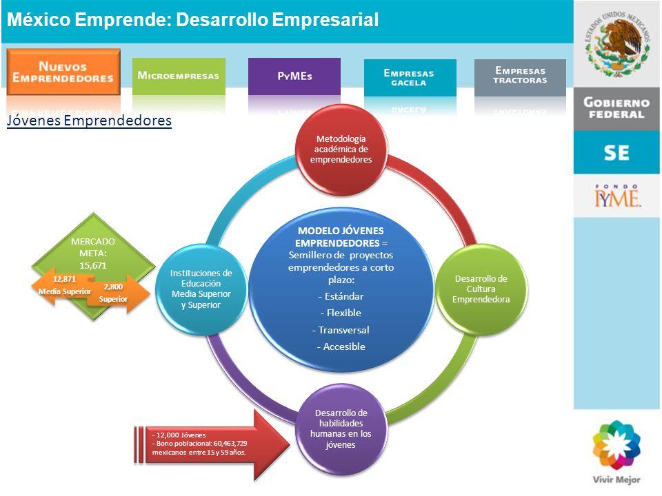 México Emprende: Desarrollo Empresarial