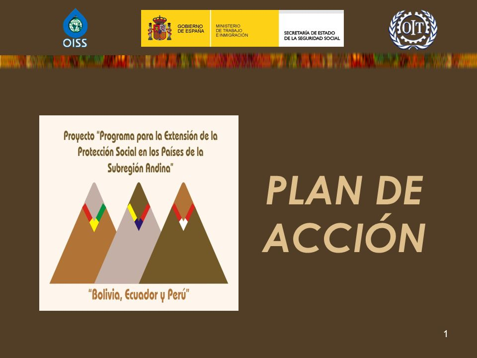 PLAN DE ACCIÓN Programa para la Extensión de la Protección Social