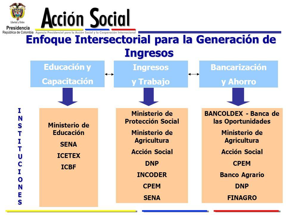Enfoque Intersectorial para la Generación de Ingresos