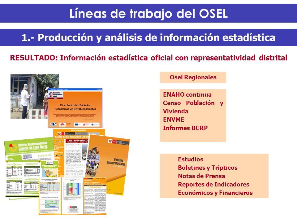 Líneas de trabajo del OSEL