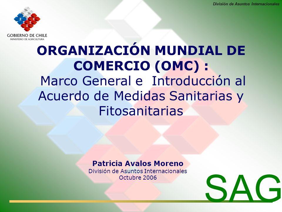 Patricia Avalos Moreno