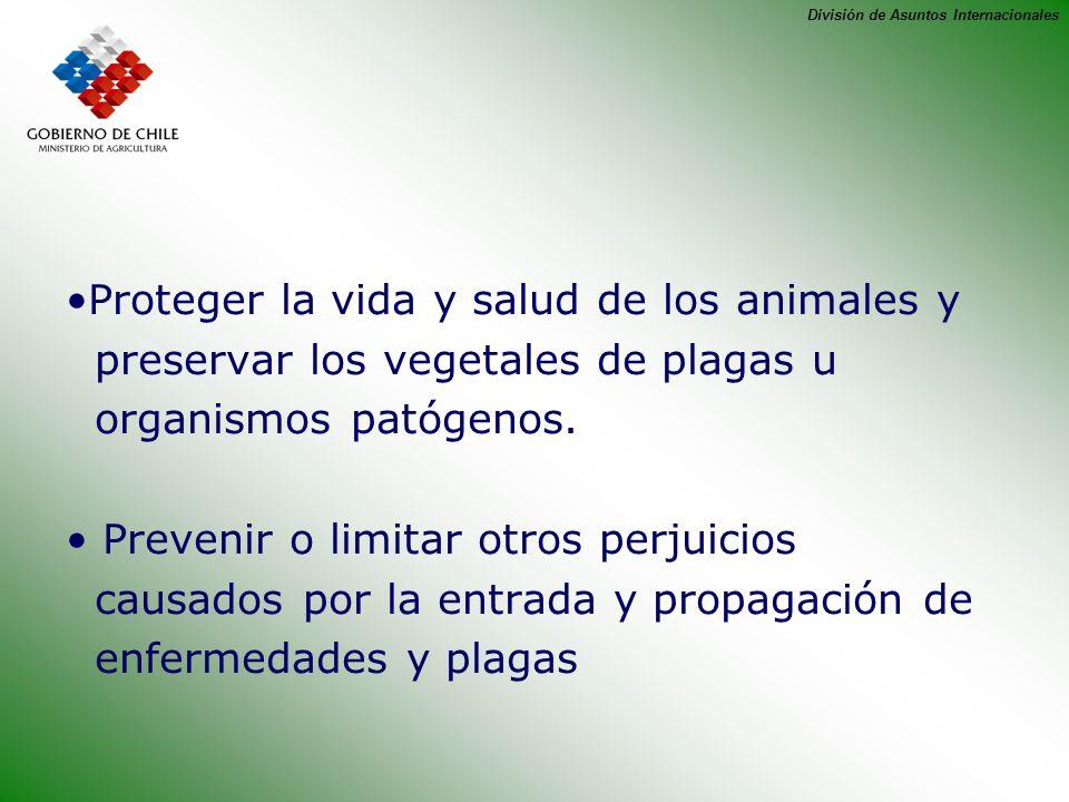 Proteger la vida y salud de los animales y