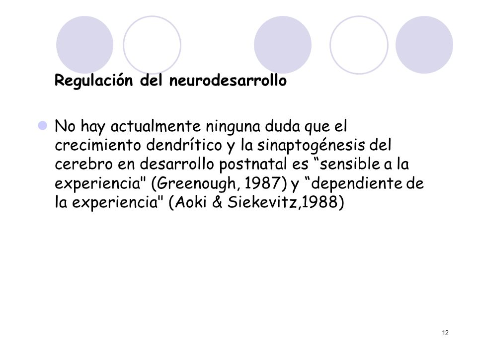 Regulación del neurodesarrollo