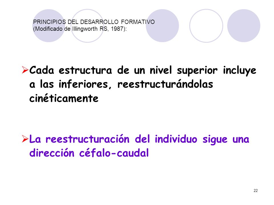 La reestructuración del individuo sigue una dirección céfalo-caudal