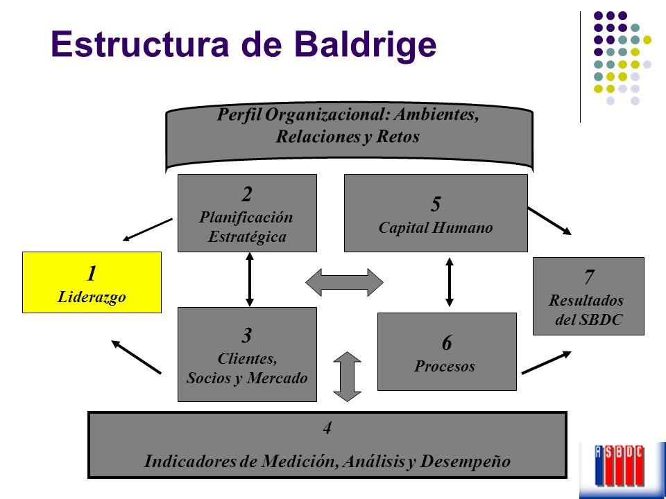 Estructura de Baldrige