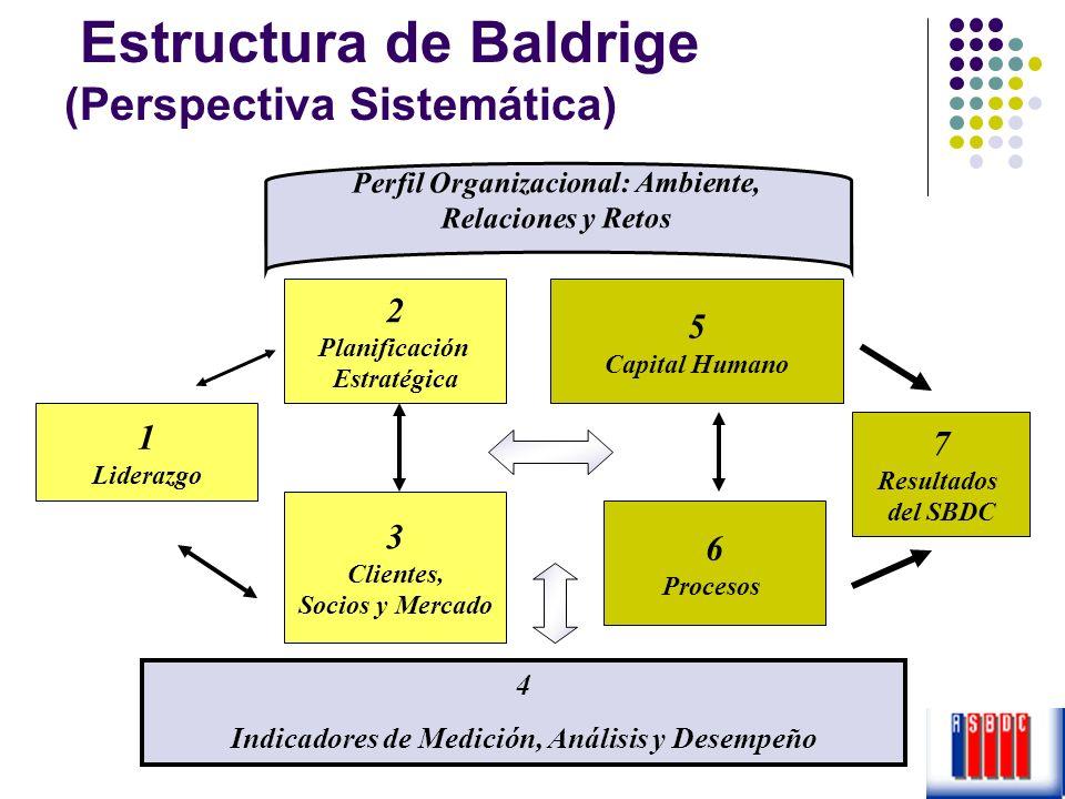 Estructura de Baldrige (Perspectiva Sistemática)