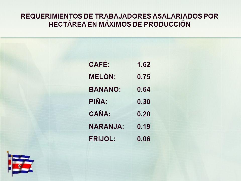 REQUERIMIENTOS DE TRABAJADORES ASALARIADOS POR HECTÁREA EN MÁXIMOS DE PRODUCCIÓN