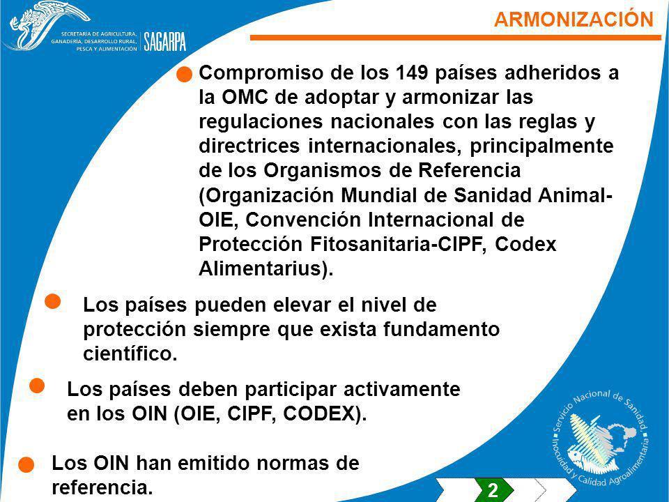 Los países deben participar activamente en los OIN (OIE, CIPF, CODEX).